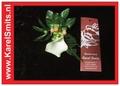 205 Corsage Witte Calla