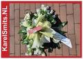 Graftoef Wit Anthurium Roos